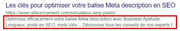 exemple-balise-meta-description